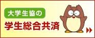 130308_banner234-60.jpg